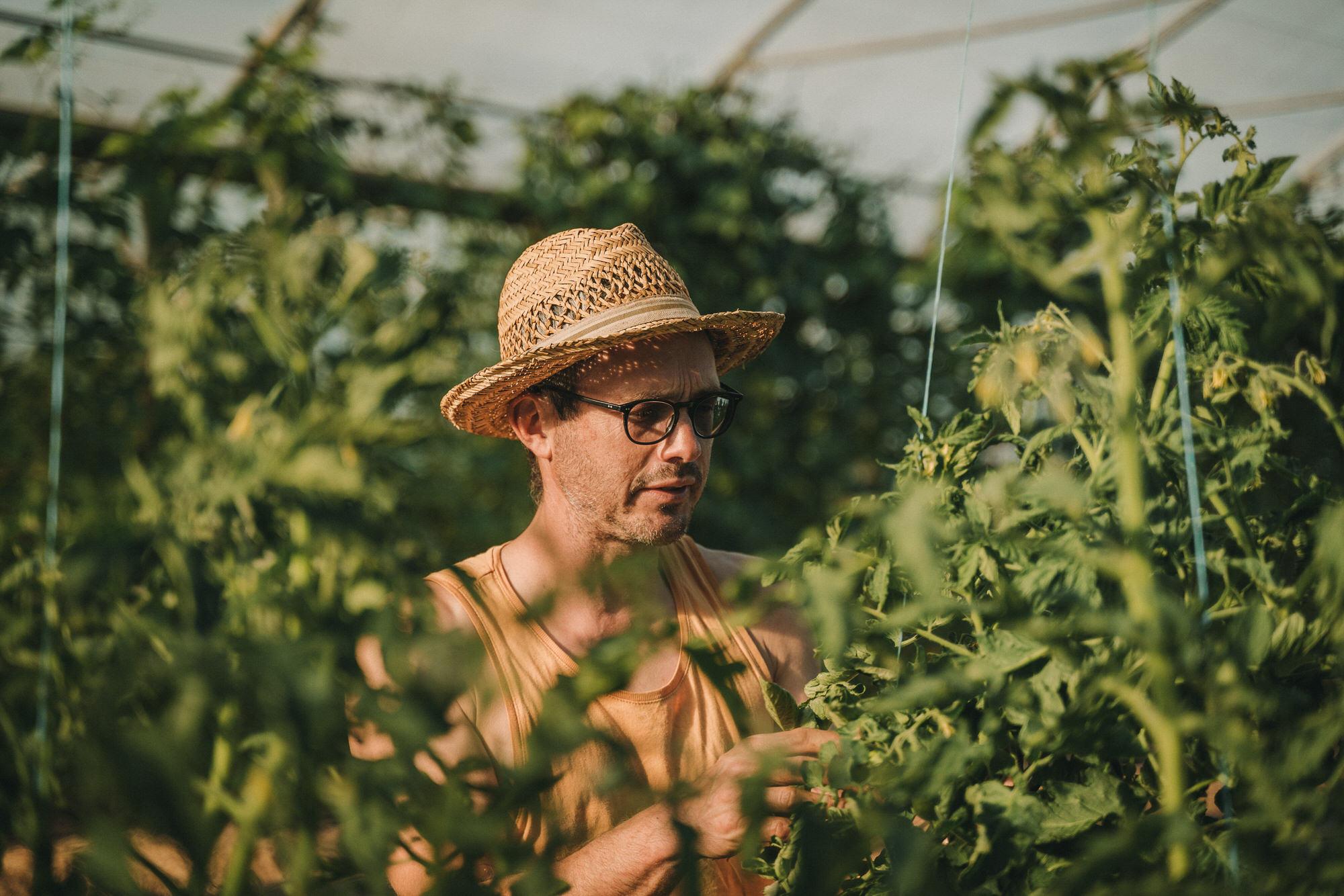 Reportage Photo Brest 20200713 04797 Les Jardins De Kerlomann Légumes Anciens Et Bio En Bretagne Www.antoineborzeix.fr , Photographe & Videaste à Brest / Finistère