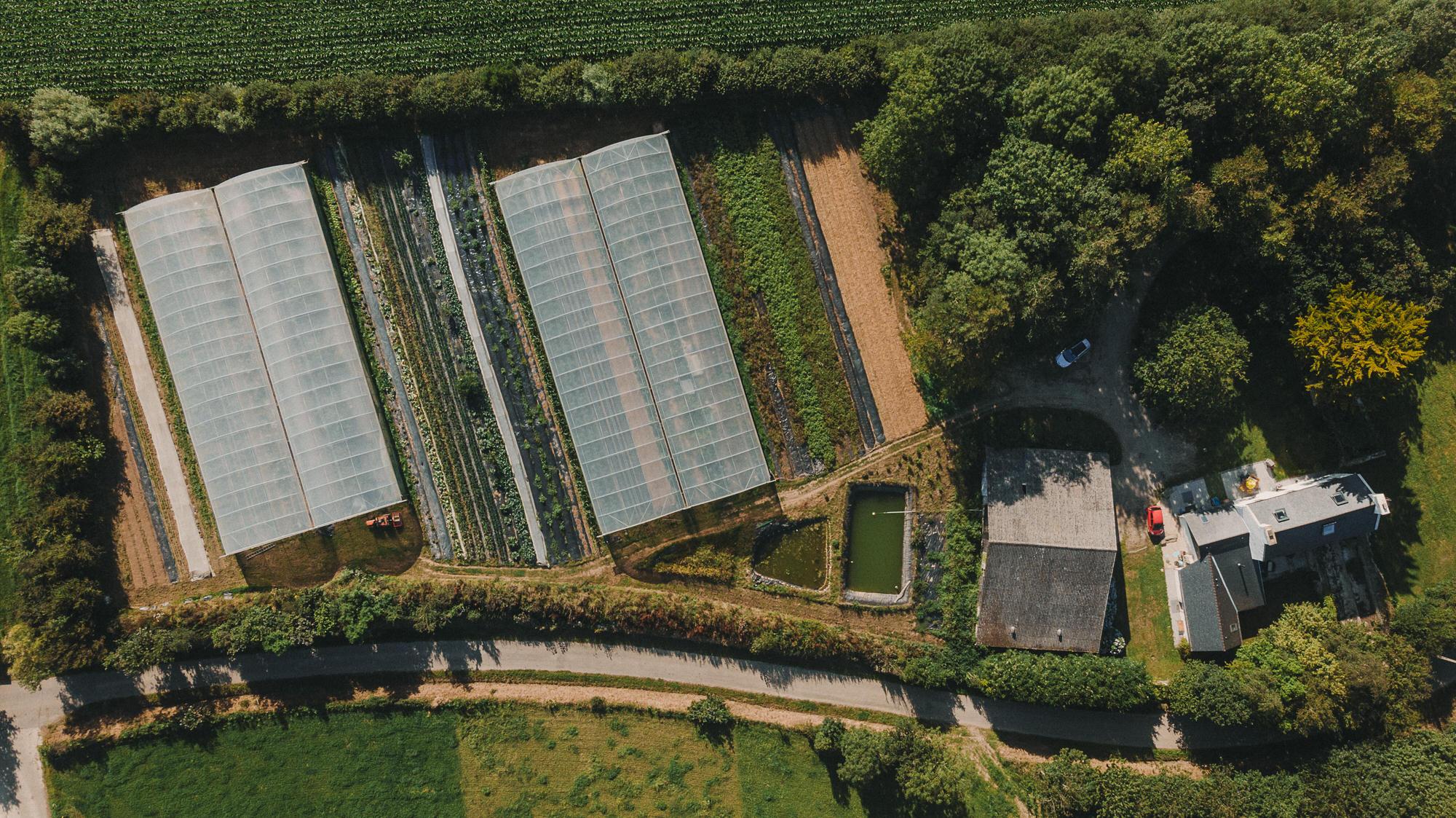Reportage Photo Brest 20200717 05028 Les Jardins De Kerlomann Www.antoineborzeix.fr , Photographe & Videaste à Brest / Finistère